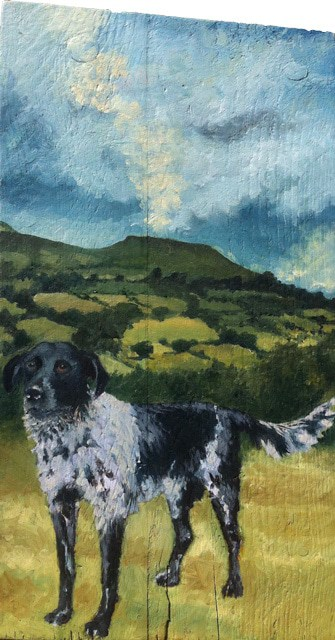 From Kilrush to Table Mountain by Sheena Vallely