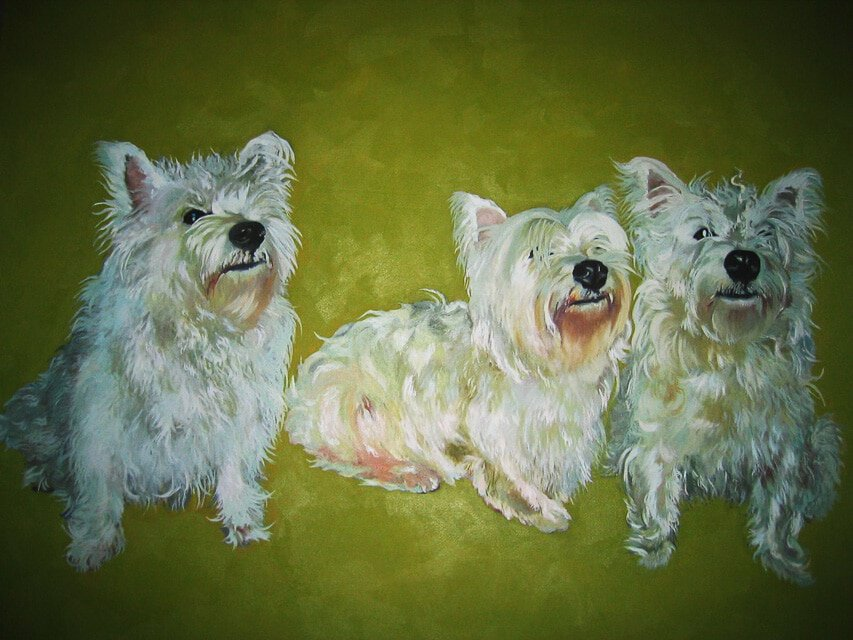 Glorious Westies by Sheena Vallely