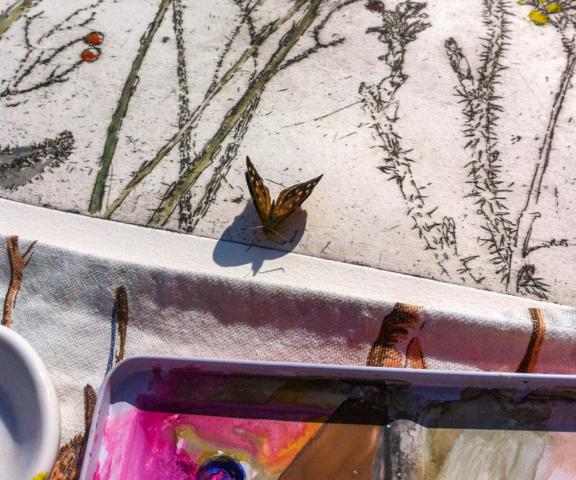 The Appreciative Butterfly