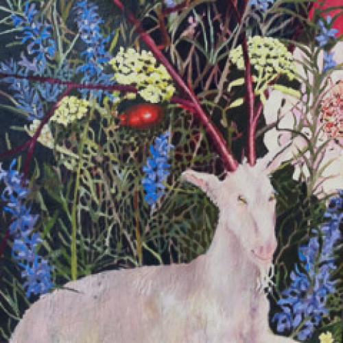 Devanny's Goat